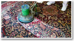 cleaning-oriental-rugs